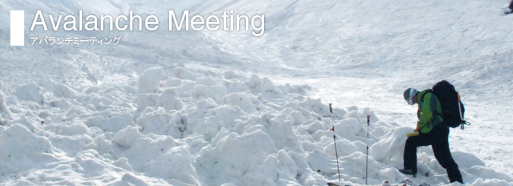 Avalanche Meeting